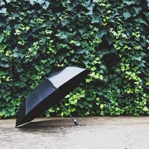 如何区分折叠伞的质量